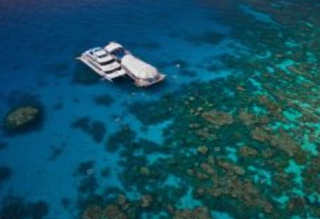 Great Adventures Reef and Green Island Cruises - Wagga Wagga Accommodation