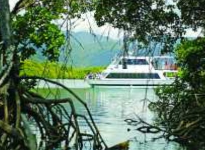Cairns Harbour Cruises - Wagga Wagga Accommodation