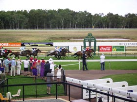 Pinjarra Race Club - Wagga Wagga Accommodation