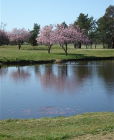 RMC Golf Club - Wagga Wagga Accommodation