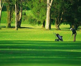Foster Golf Club - Wagga Wagga Accommodation