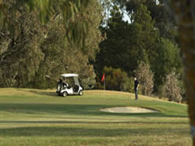 Barossa Valley Golf Club Incorporated - Wagga Wagga Accommodation