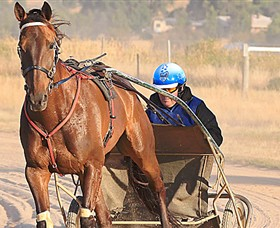 Ballarat  District Trotting Club - Wagga Wagga Accommodation