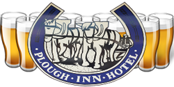 Plough Inn Hotel - Wagga Wagga Accommodation