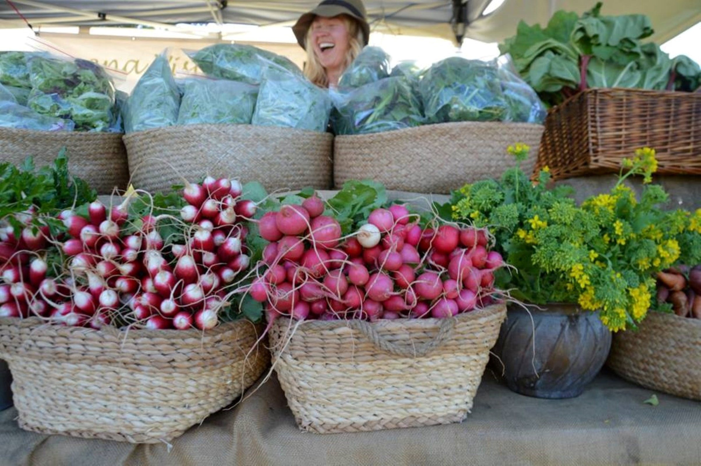 Berry Farmers' Market - Wagga Wagga Accommodation