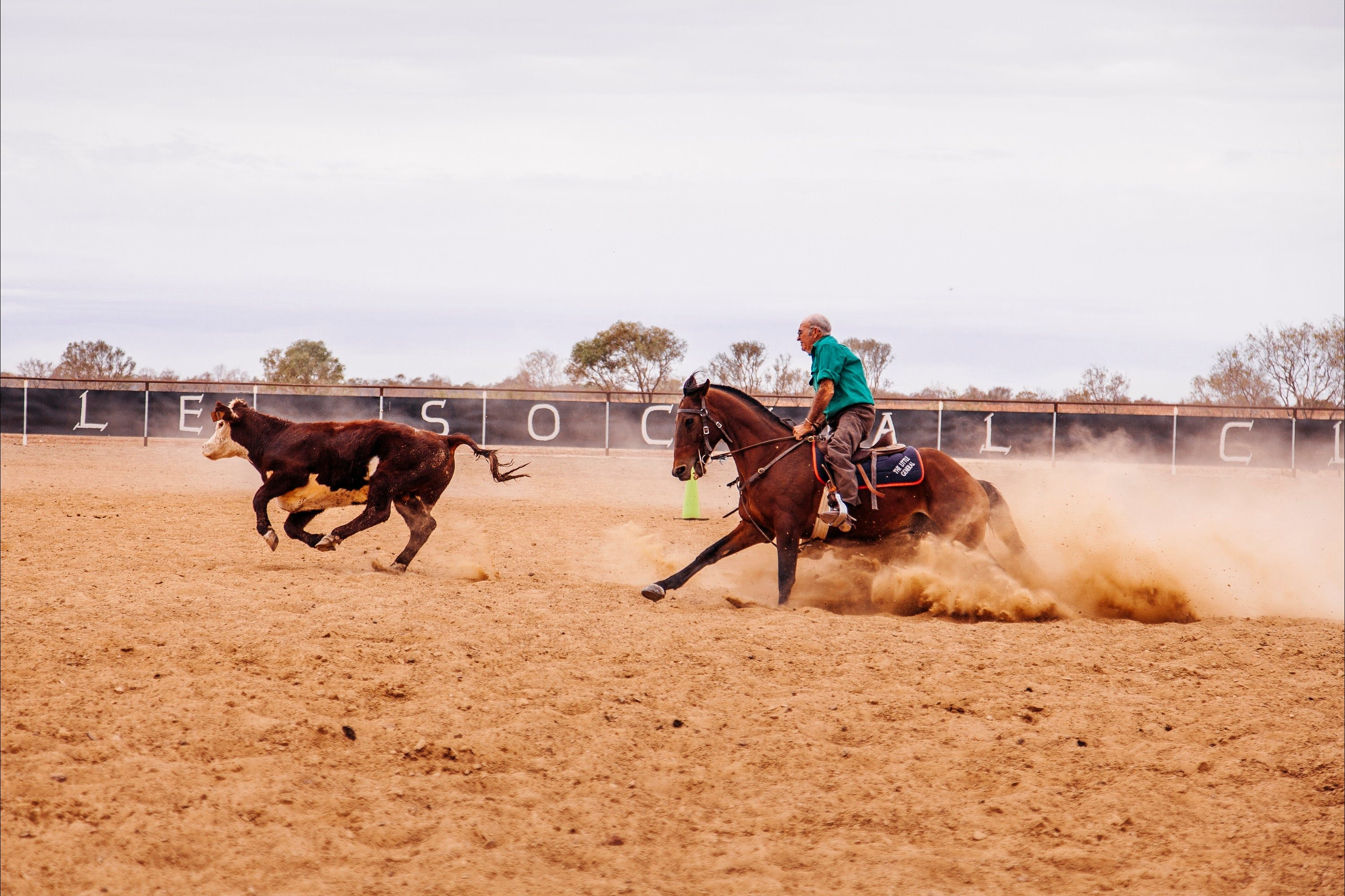 Birdsville Campdraft  Rodeo and Bronco Branding - Wagga Wagga Accommodation