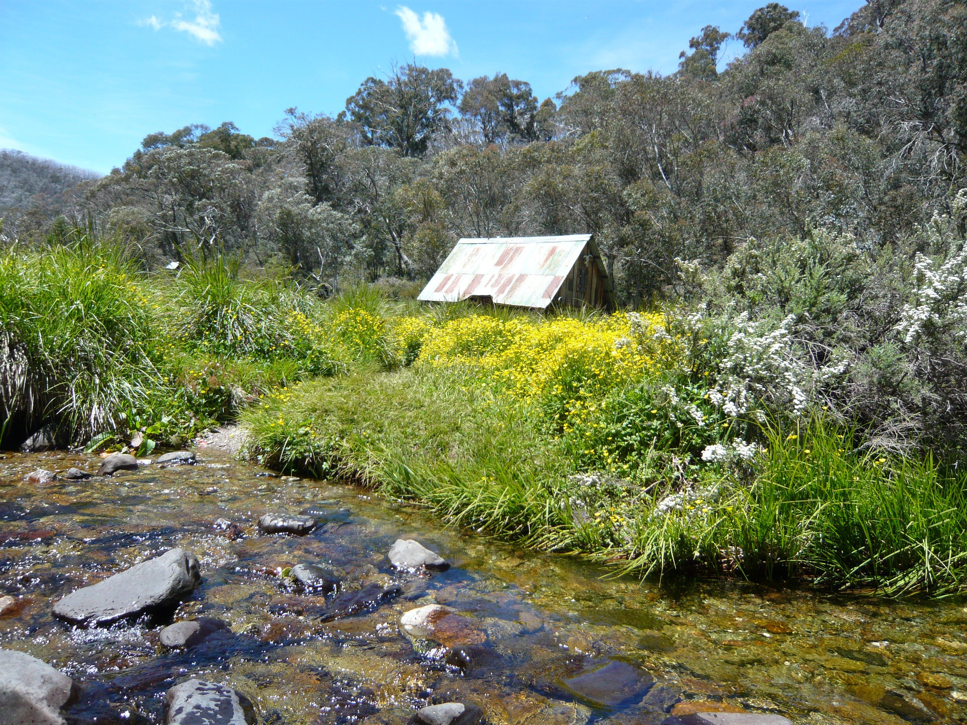 Hedonistic Hiking's Falls Creek to Hotham - Wagga Wagga Accommodation