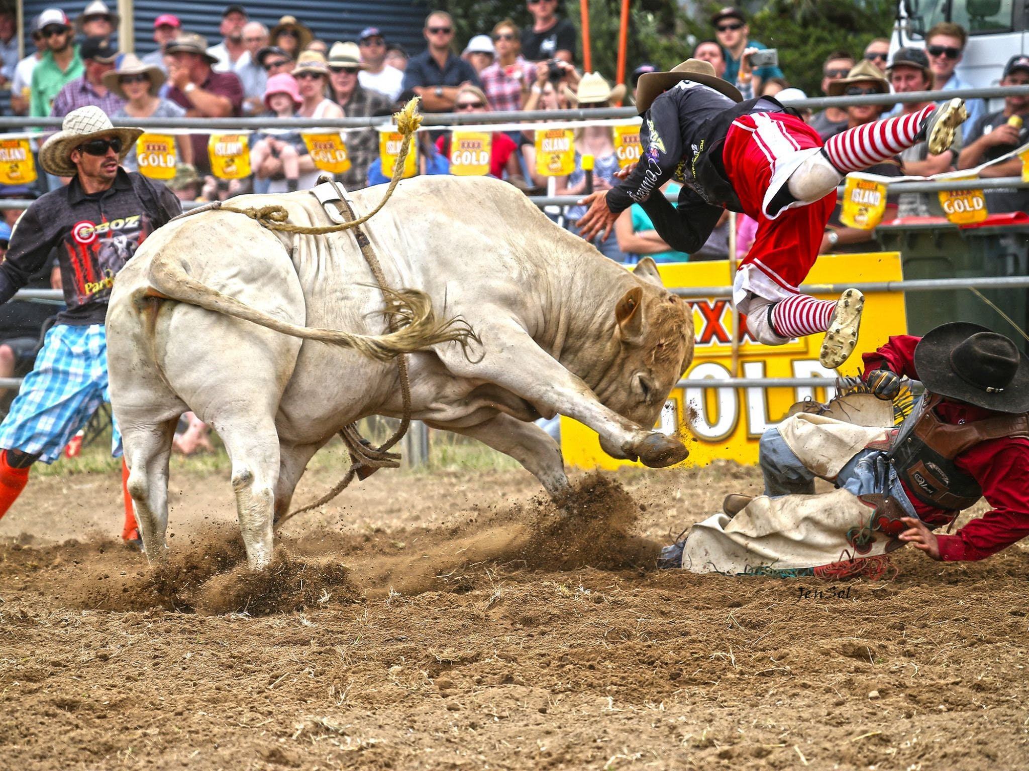 Jindabyne's Man From Snowy River Rodeo - Wagga Wagga Accommodation