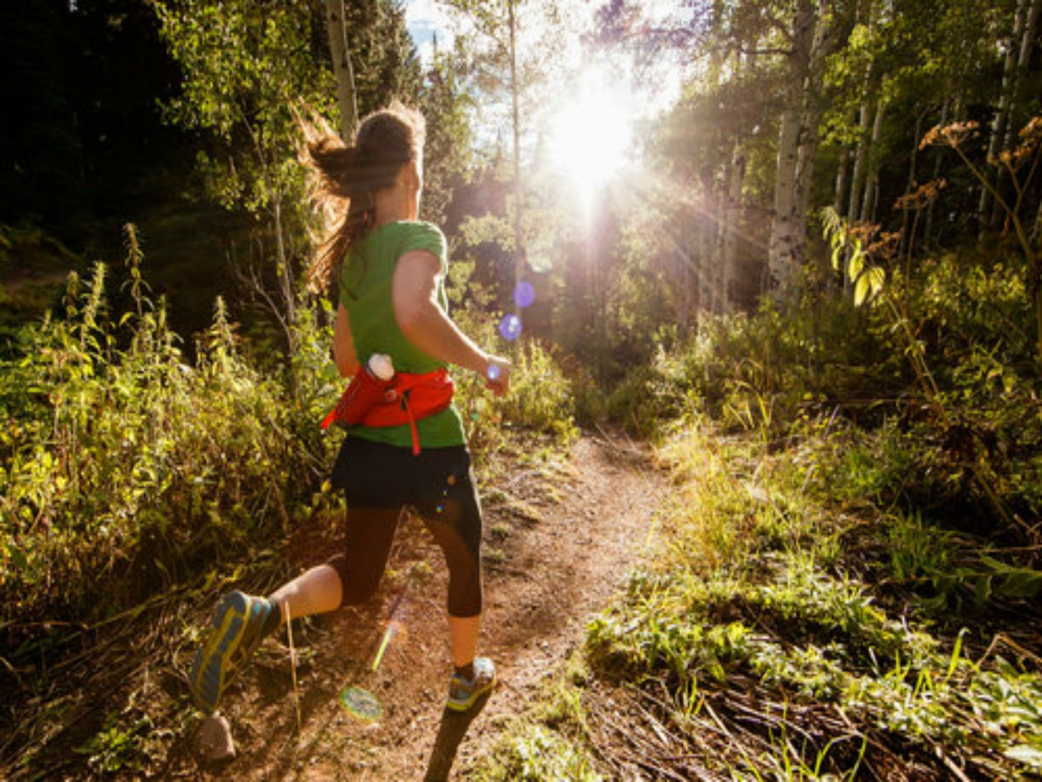 Run Dungog - Wagga Wagga Accommodation