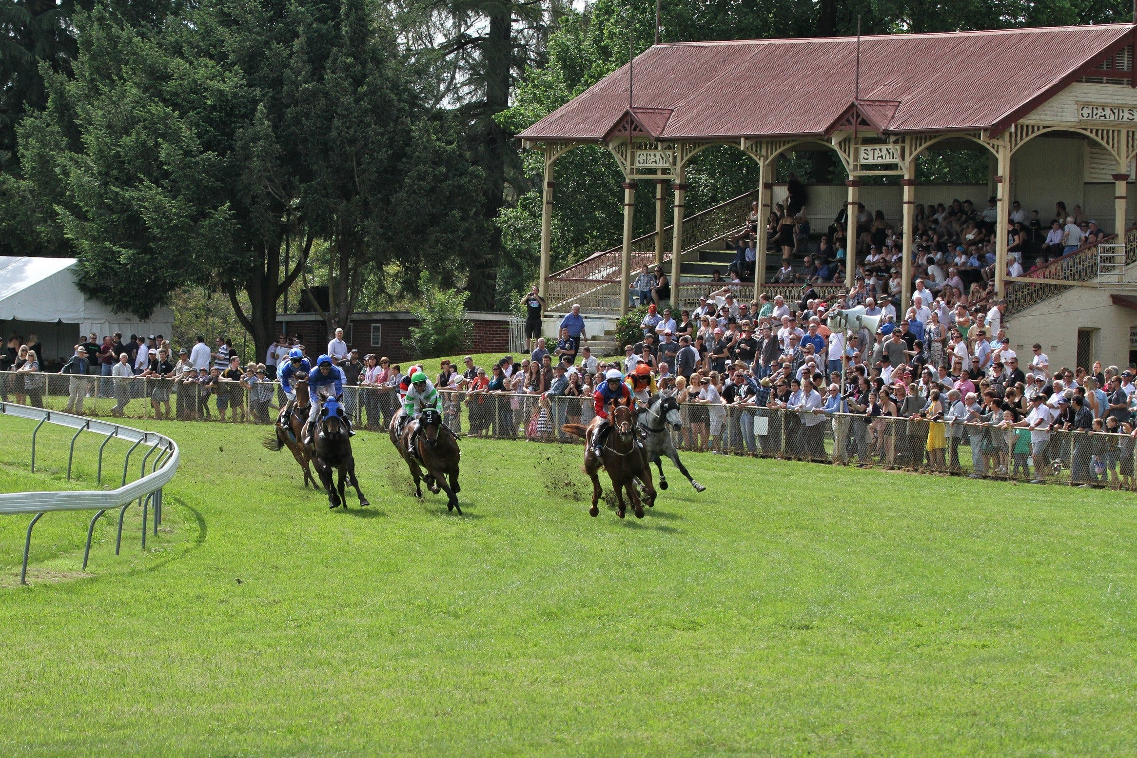 Tumut Derby Day - Wagga Wagga Accommodation