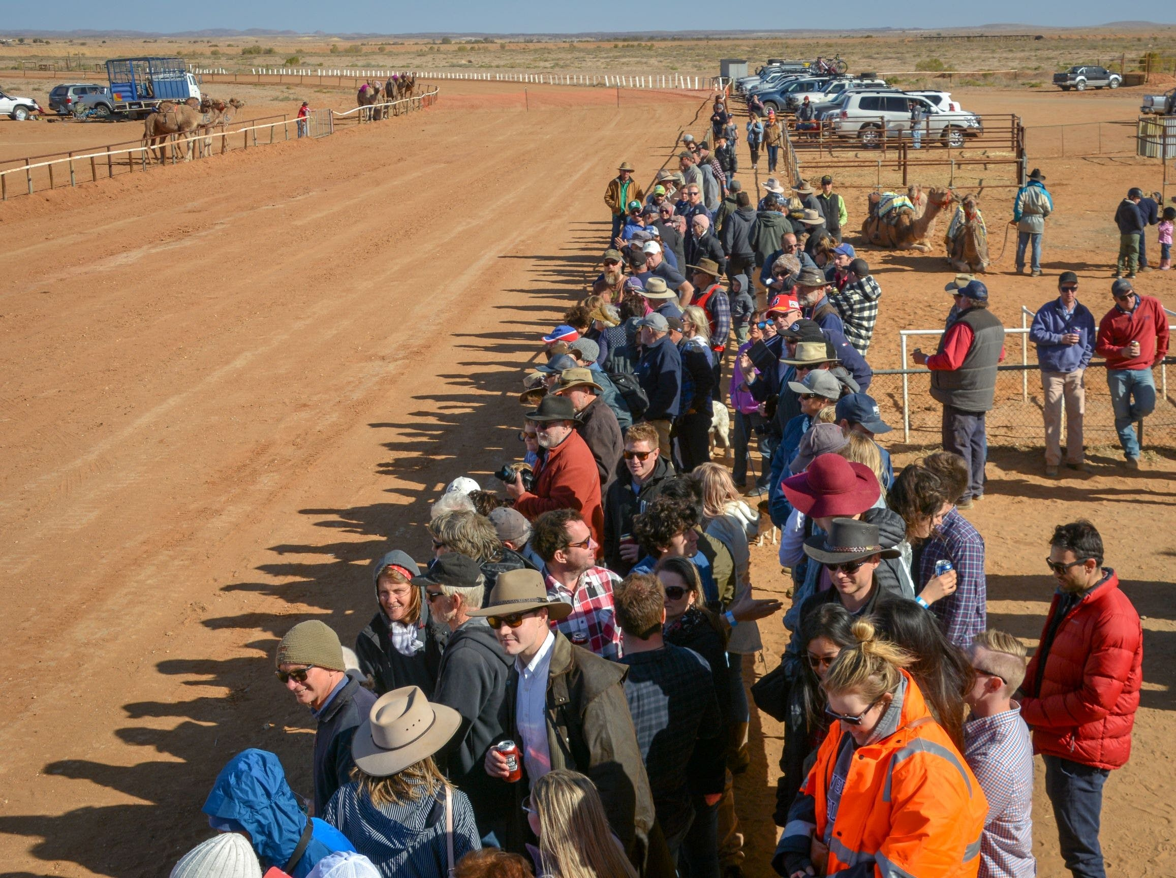 28th Marree Australasian CAMEL CUP 3 July 2021 - Wagga Wagga Accommodation