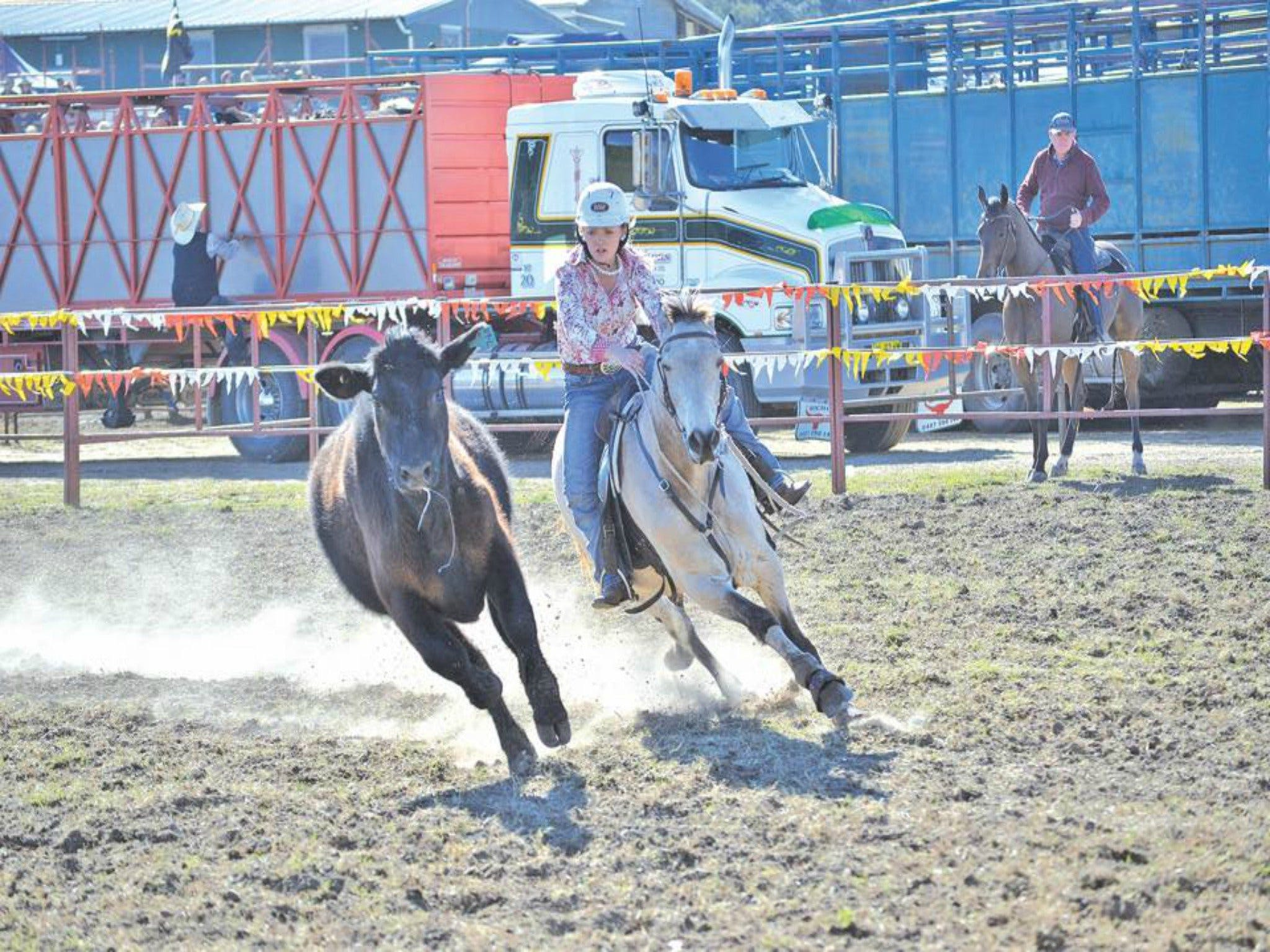 Gresford  Campdraft and Rodeo - Wagga Wagga Accommodation