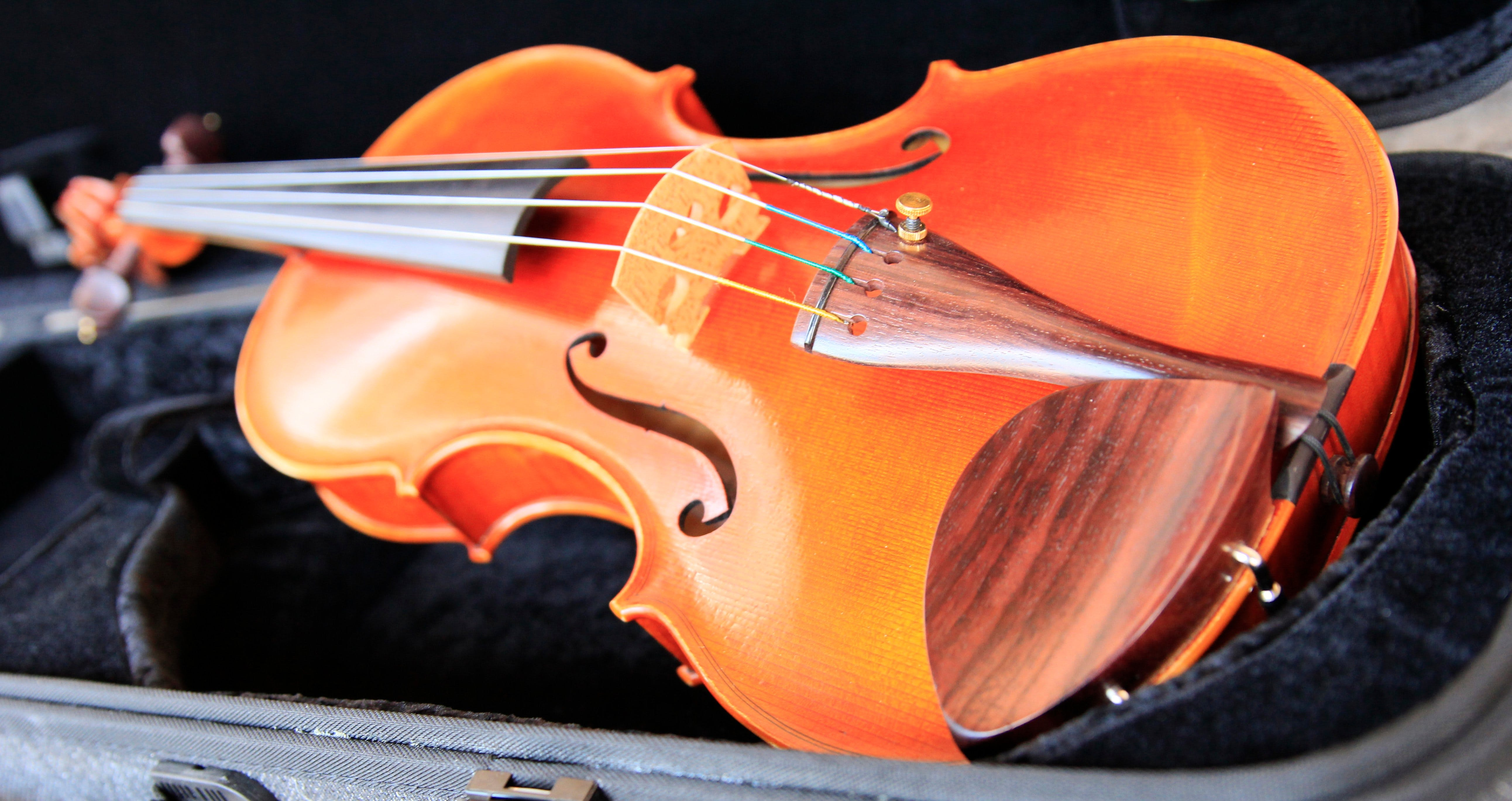 Kendall National Violin Competition Finals Weekend - Wagga Wagga Accommodation
