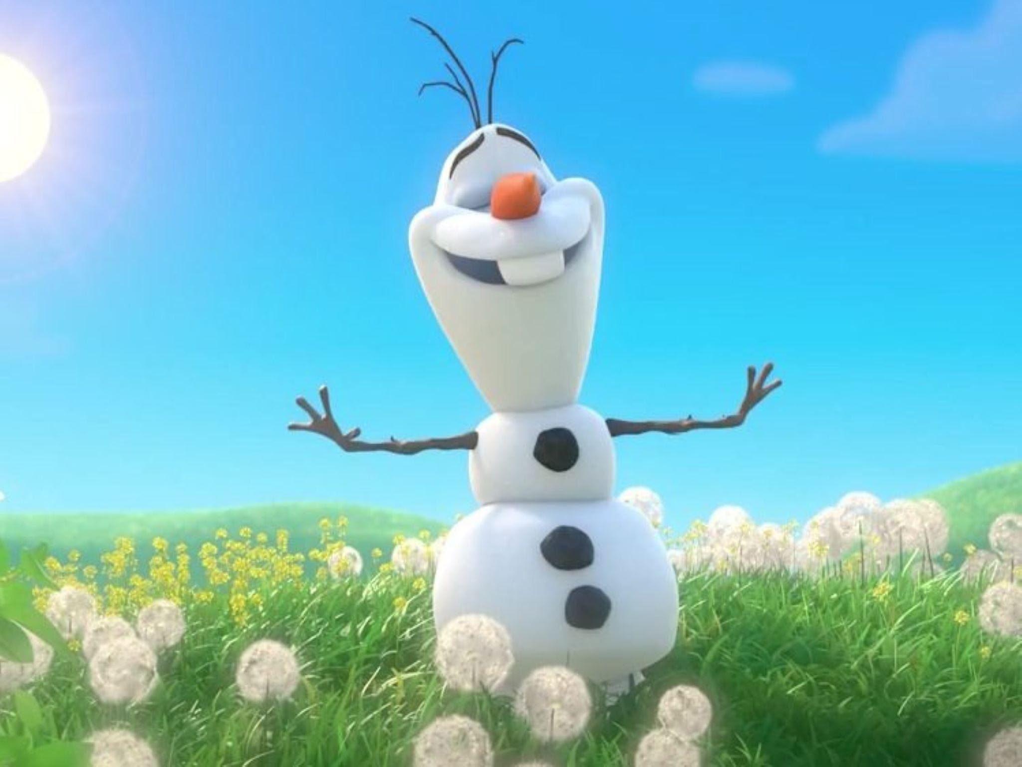 Meet Olaf from Frozen - Wagga Wagga Accommodation