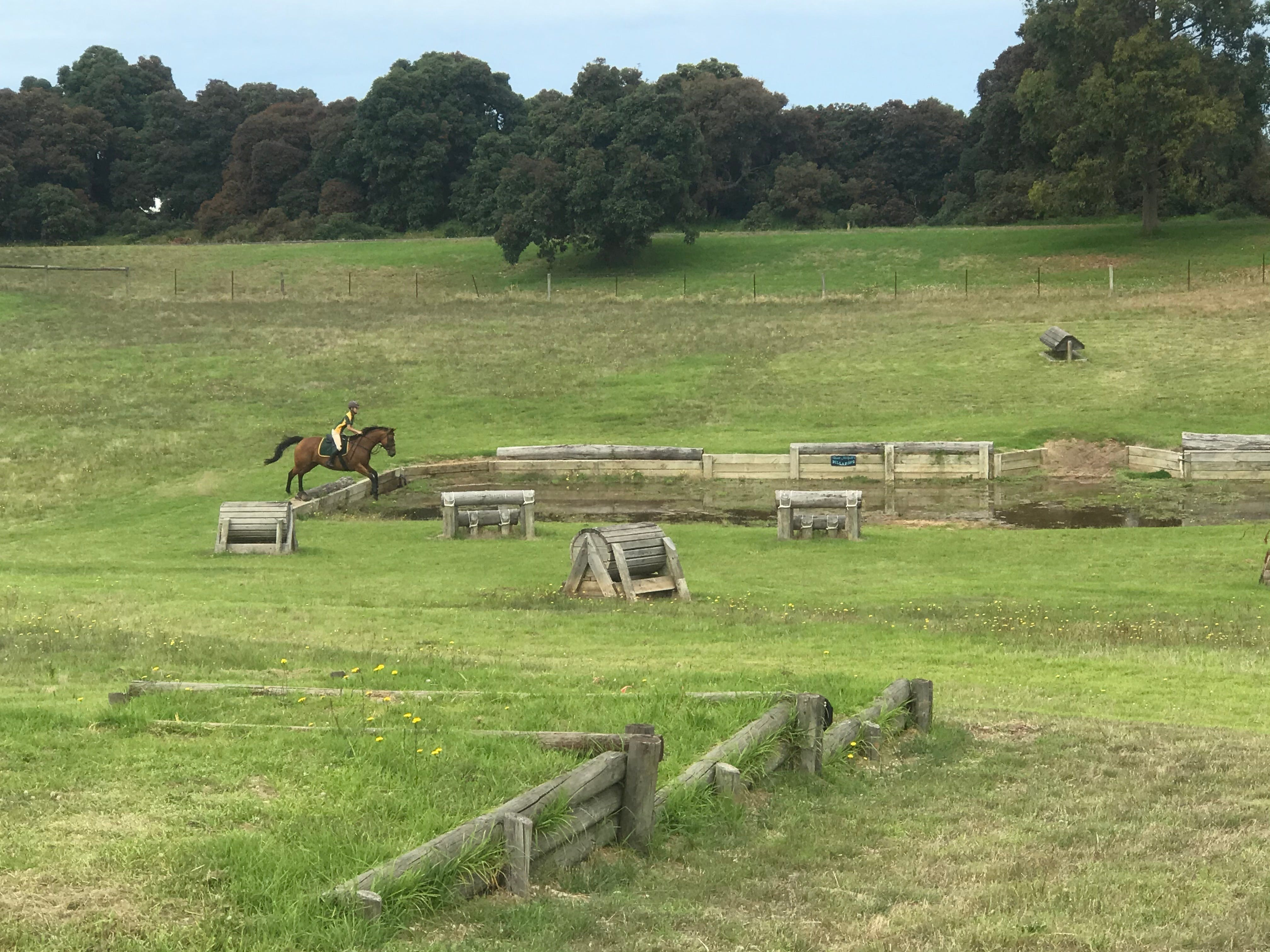 Mount Gambier and District Pony Club Horse Trials 2020 - Wagga Wagga Accommodation